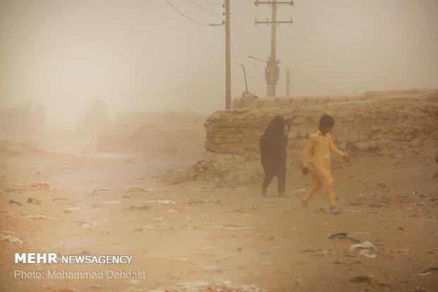 طوفان سیستان 810 نفر را روانه بیمارستان کرد