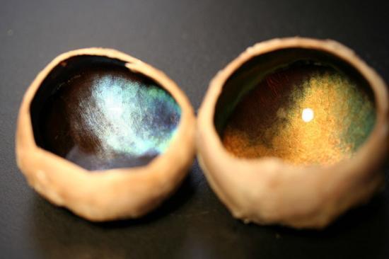 تغییر رنگ عجیب چشم گوزن در هرفصل
