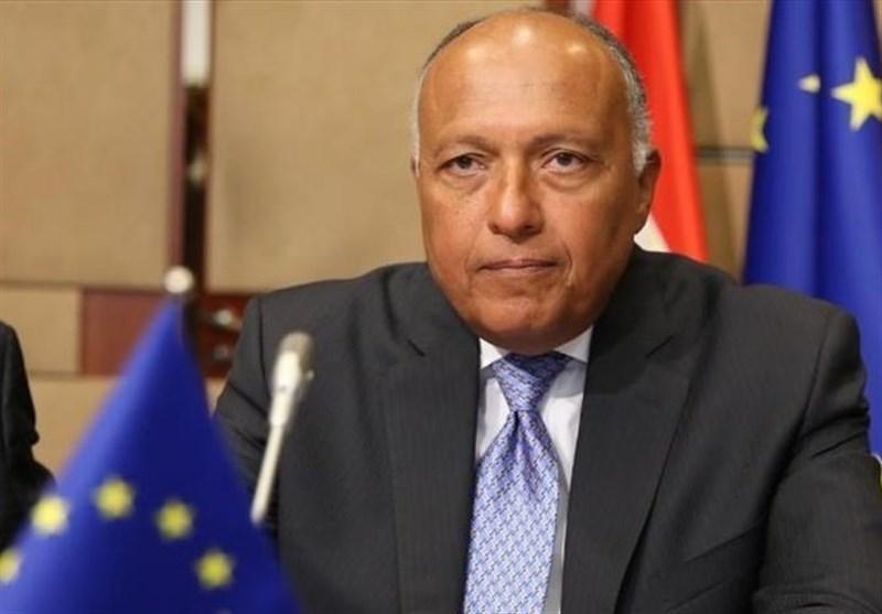 دیدار هیئتی از معارضان سوری با وزیر خارجه مصر