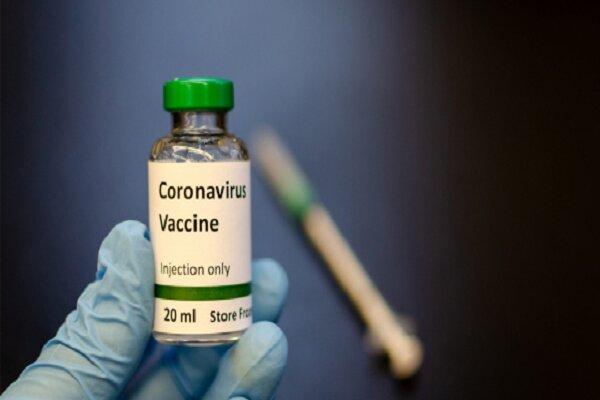 واکسن چینی از ابتلای میمون ها به ویروس کرونا جلوگیری کرد