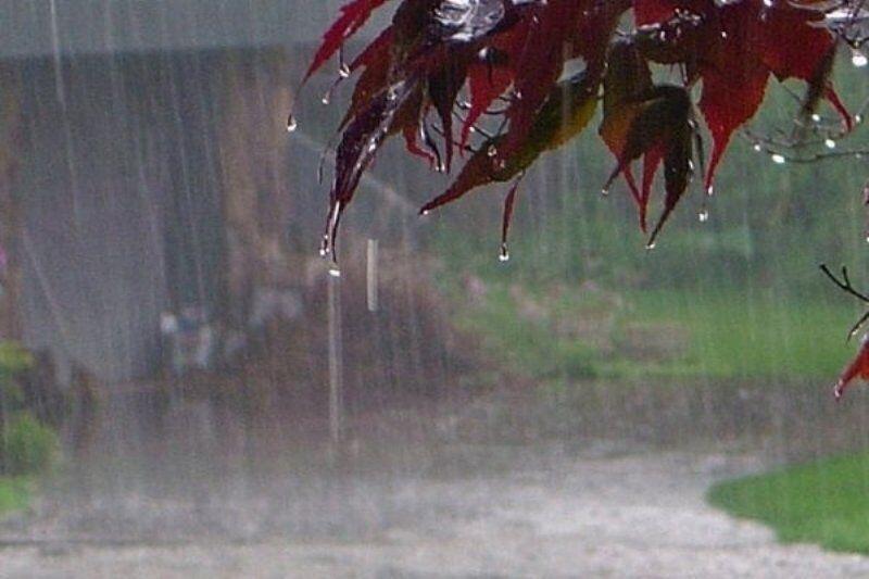 خبرنگاران بارش های رگباری در خراسان رضوی شدت می گیرد