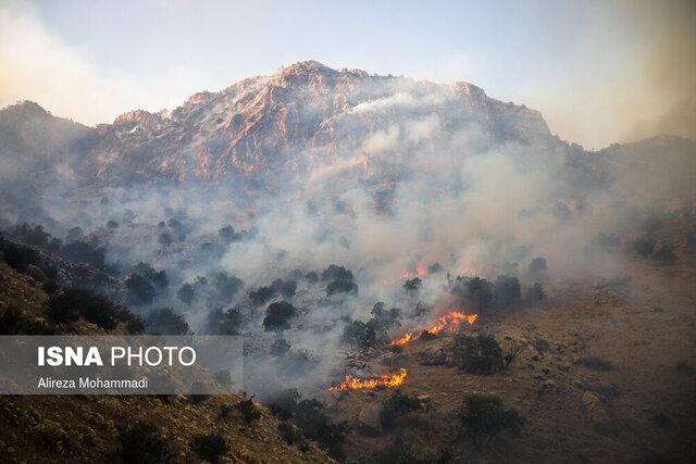 آتش سوزی جنگل ها اتفاقی نیست