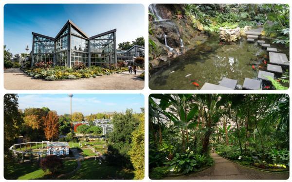 باغ گیاه شناسی پالمن گارتن؛ جاذبه متفاوت فرانکفورت برای عاشقان طبیعت
