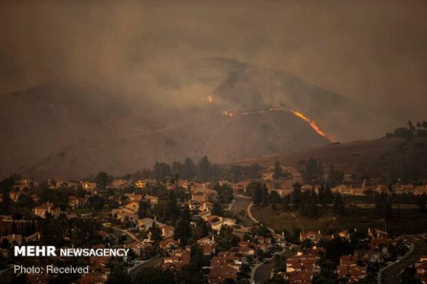 طرح شناسایی آتش سوزی جنگلها با اینترنت اشیا اجرا می گردد