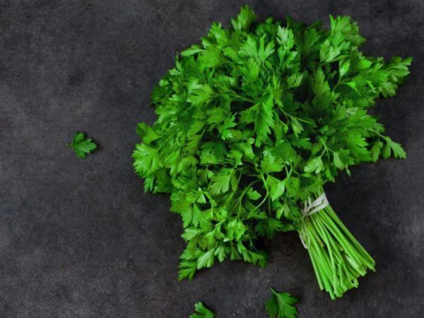 گیاه هایی شگفت انگیز که سرطان را فراری می دهند!
